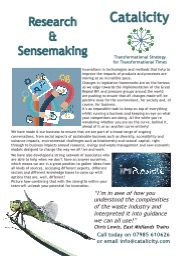 Research and Sensemaking